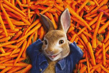cinema-coniglio